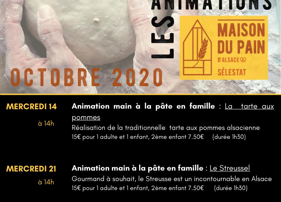 Les animations main à la pâte en famille d'Octobre !